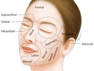 Facial Esthetic Surgery